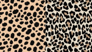 Leopard vs cheetah print
