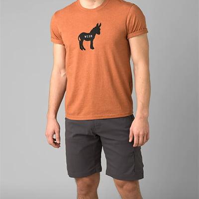 Prana Stretch Zion Shorts