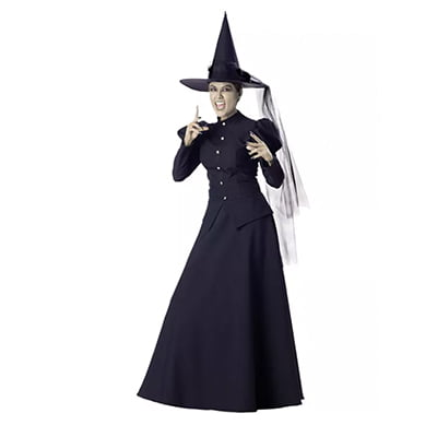 InCharacter Wretched Witch Adult Halloween Costume